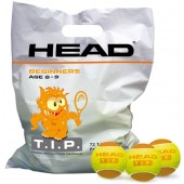 SACHETS DE 72 BALLES HEAD TIP ORANGE 2015